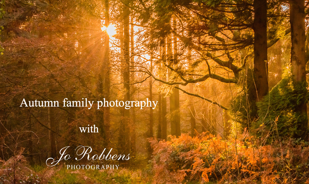 Surrey Family and Business Photographer