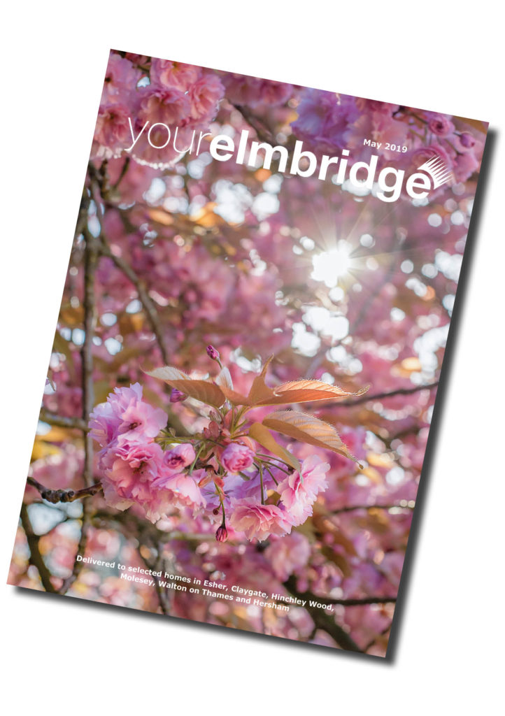 Cherry Blossom Image_Your Elmbridge_Jo Robbens Photography