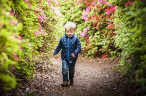 Little boy amongst the Azaleas in Isabella Plantation