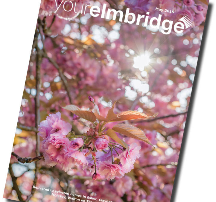 Cherry blossom and magazine front covers!